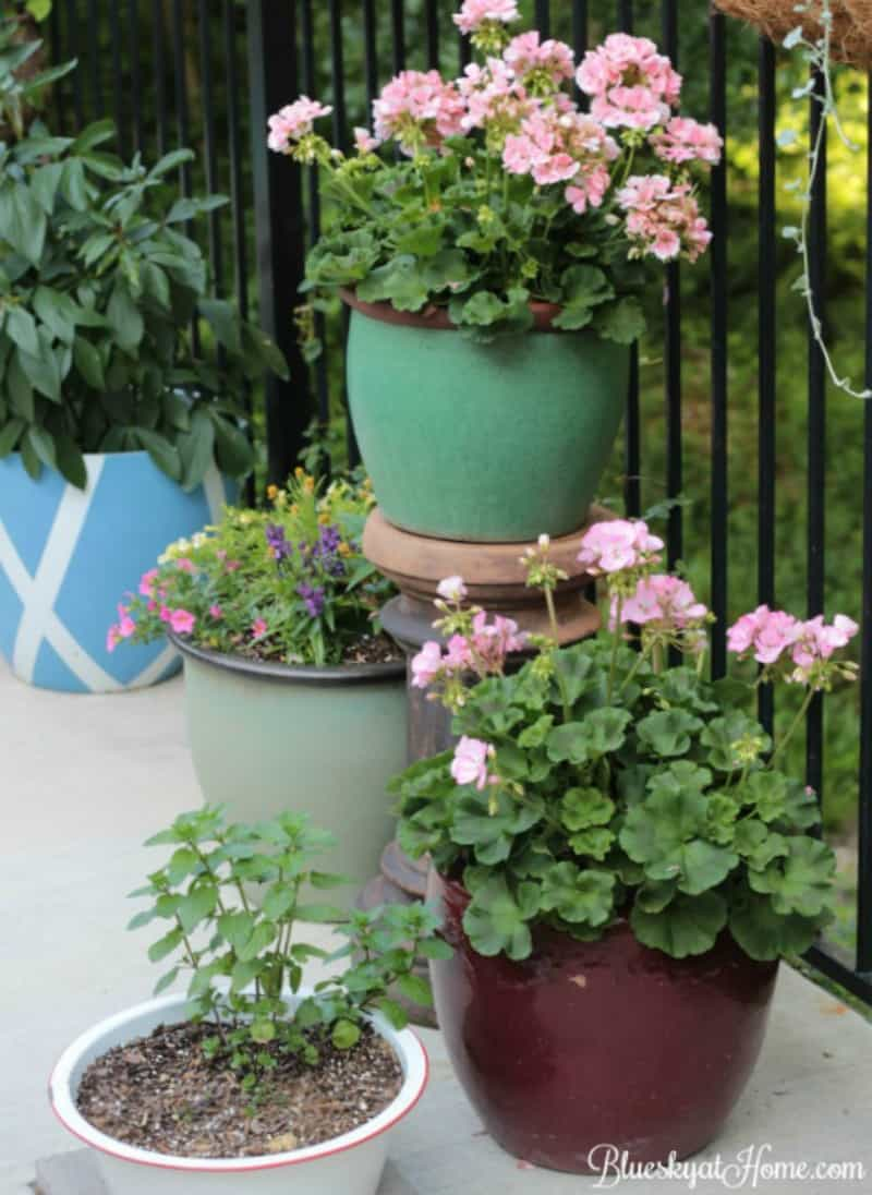 How to Grow a Beautiful Garden in a Small Space ~ Bluesky at Home
