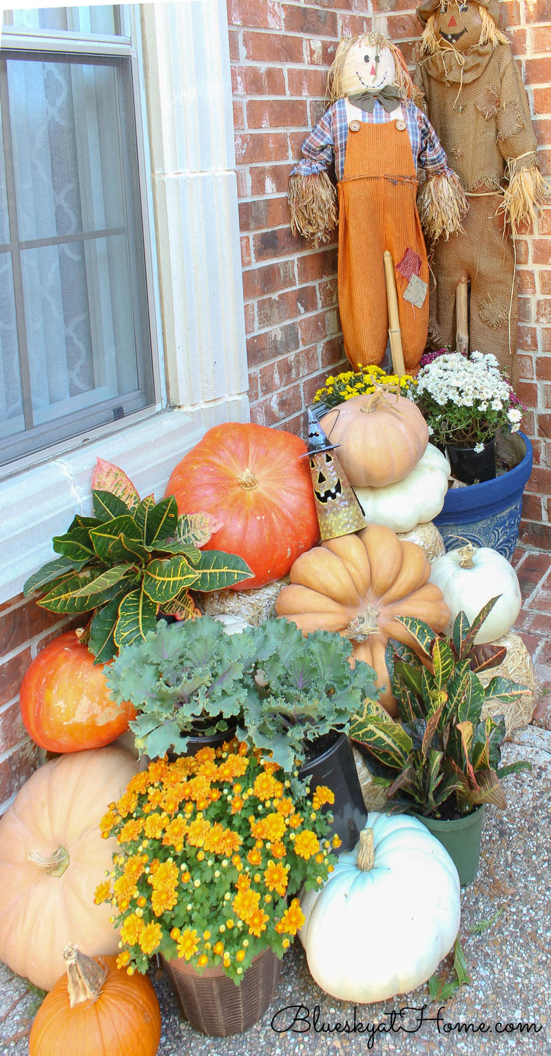 pumpkins and scarecrows