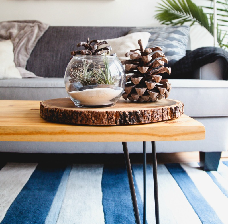 blue and white rug, sofa, blanket, pinecone