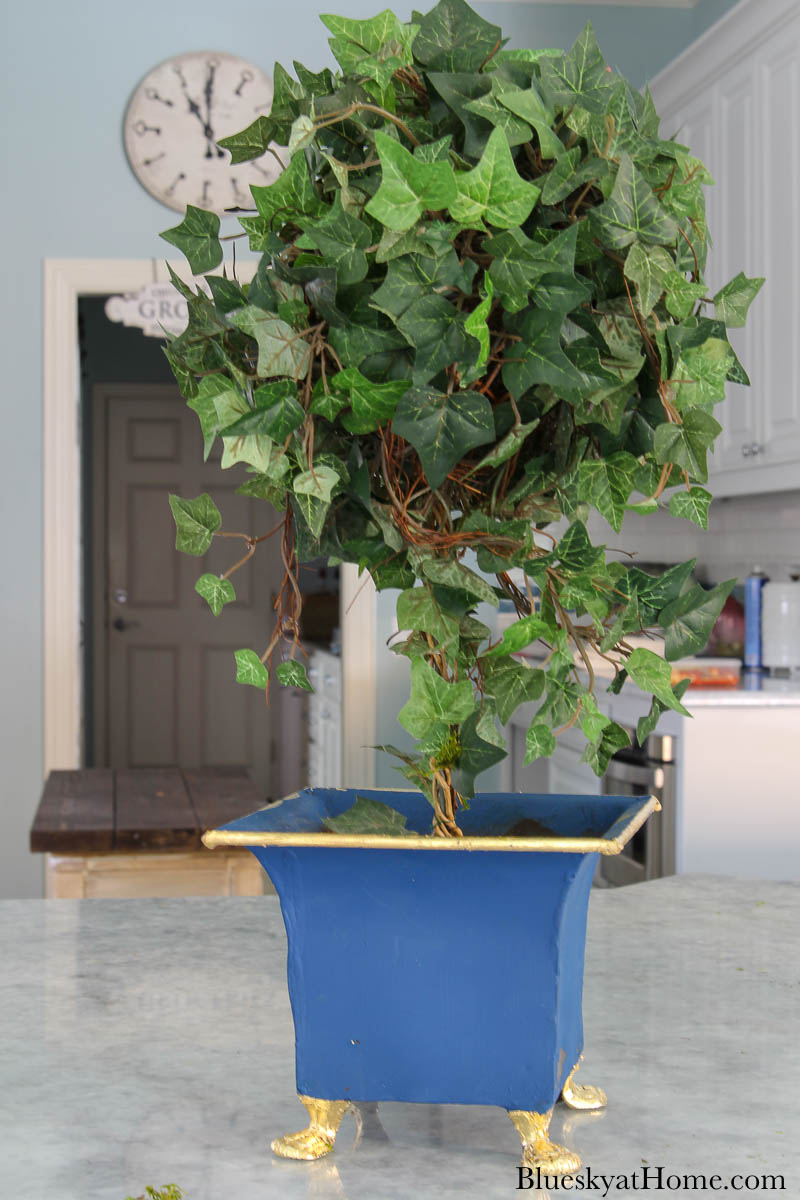 blue painted planter with green topiary