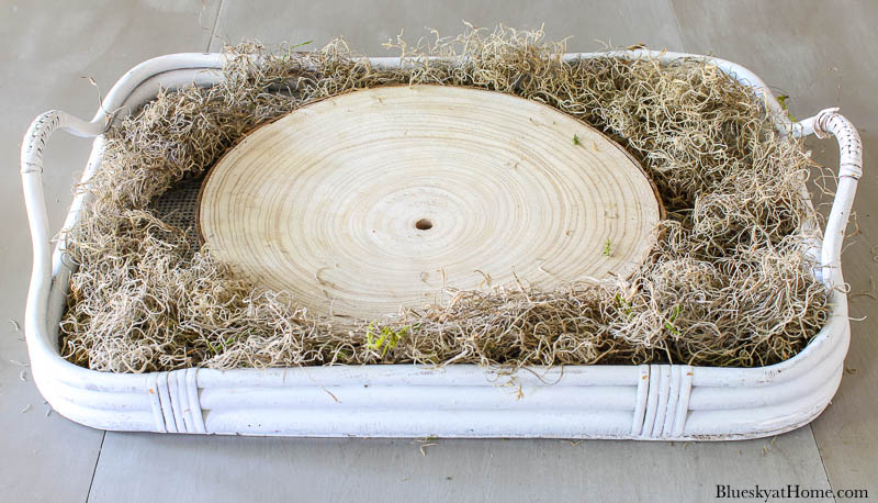 wood slice in tray