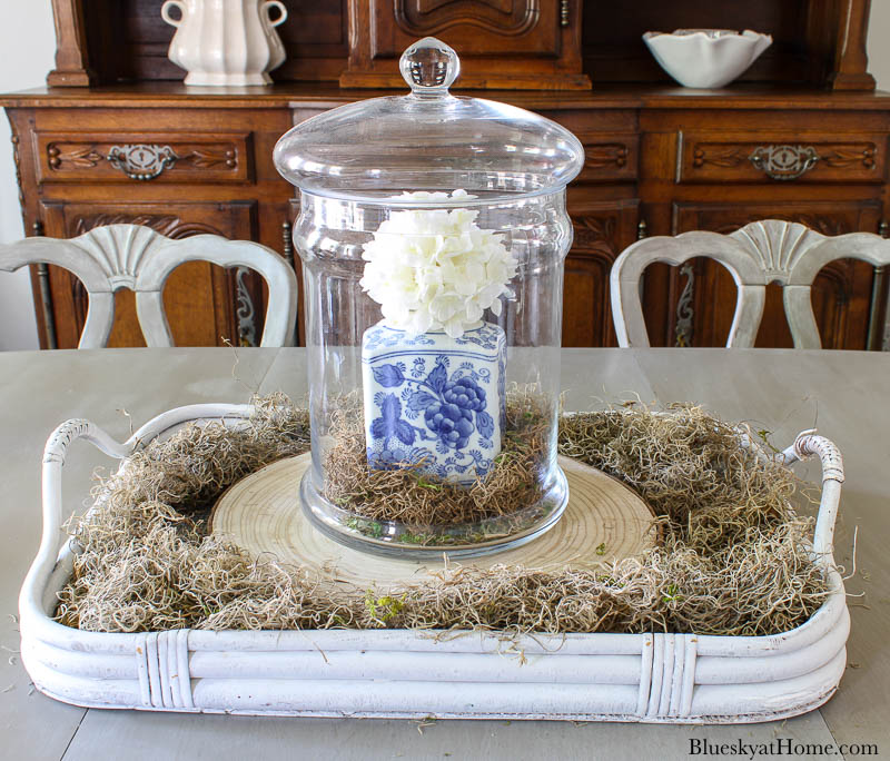 blue and white jar in cloche