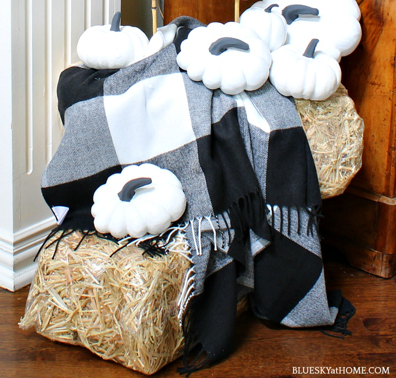 hay bales with black and white shalw and black and white pumpkins