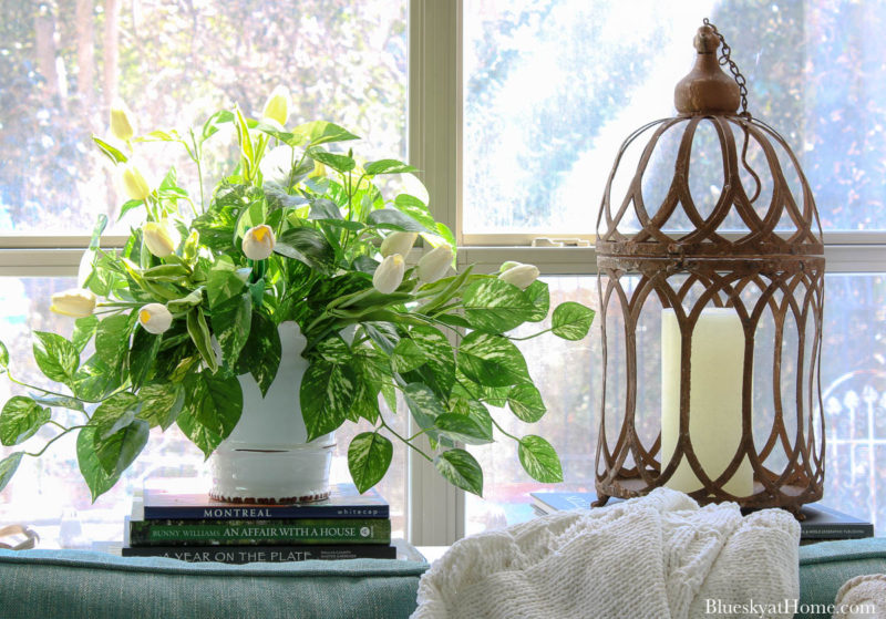 pot of pothos with tulips