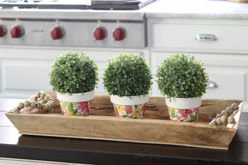 flower pots with green balls