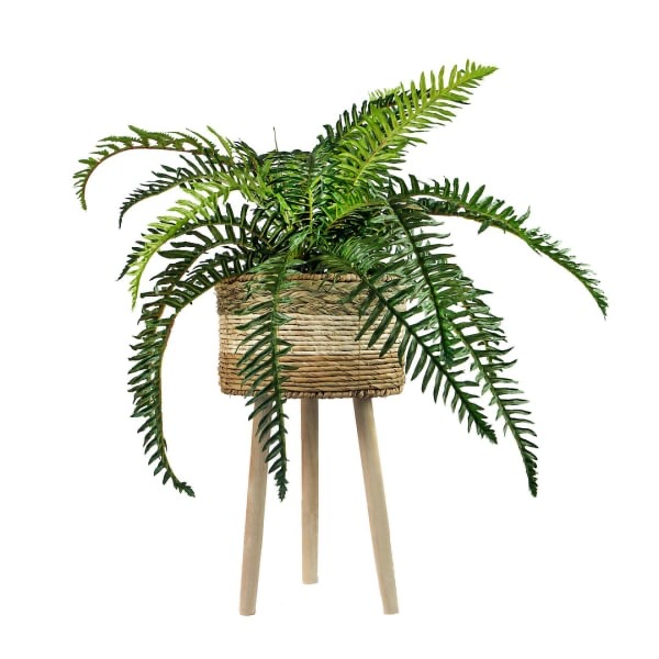 Pier 1 plant stand