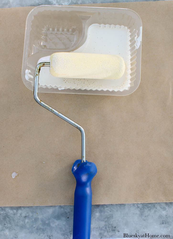 plastic container with paint roller
