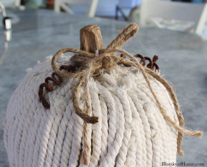 decorated pumpkin with rope and twine